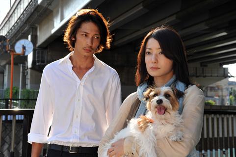 犬を抱える菅野美穂